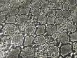 画像4: ヘビ革 合皮レザー生地【メタリックパイソン グレー】 (4)