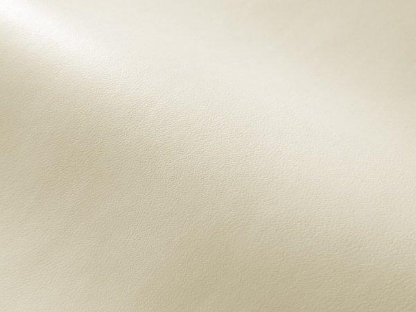 画像1: 合皮レザー生地【薄手 アイボリー・オフ白 ツヤなし】 (1)